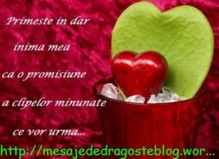 POZE IMAGINI SMS DE DRAGOSTE SI IUBIRE (13)